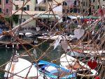 Una rete da pesca e il porticciolo di Camogli